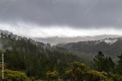 Fotografie, Obraz  A view of Mt. Tamalpais in Marin County