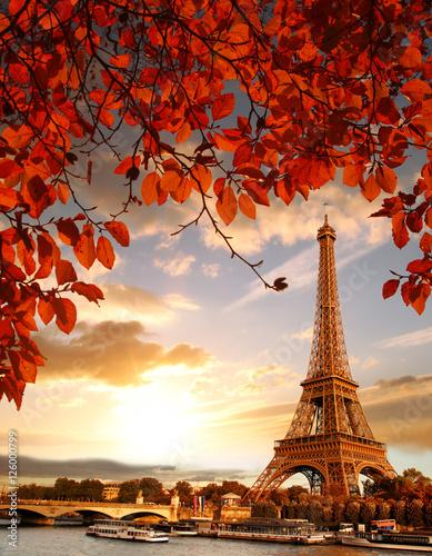 wieza-eiffla-z-jesiennych-lisci-w-paryzu-francja
