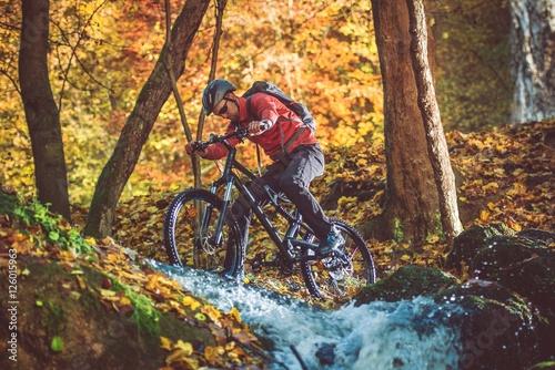 Fotografie, Obraz  Active Mountain Biker
