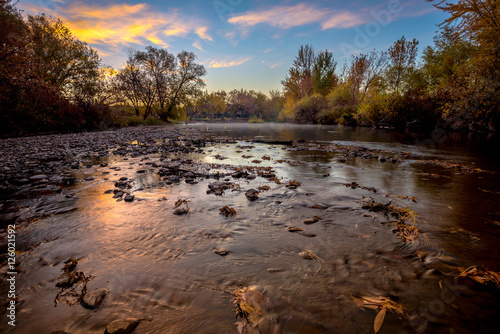 Poster Aigle Idaho Boise River with fall leaves at sunrise