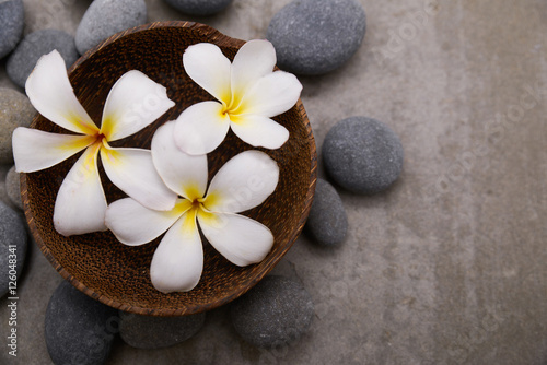 Poster Spa Three frangipani in wooden bowl with spa stones on grey background.