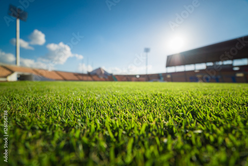 Green grass in soccer stadium Poster