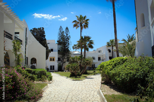 Foto op Plexiglas Tunesië White houses and green palms of Sousse, Tunisia