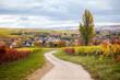 canvas print picture - Alzey Weinheim im Herbst