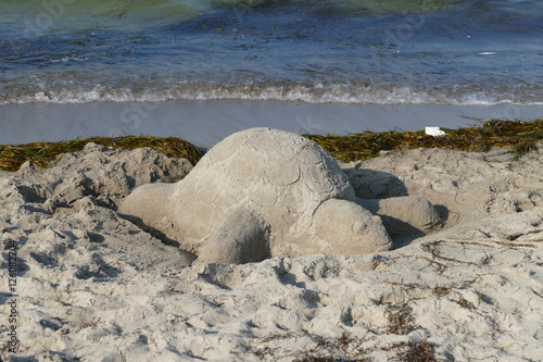 Poster Polar bear Sandschildkröte, Sandburg an der Ostsee