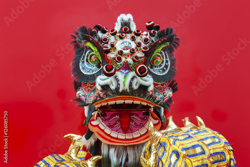 Fotografie, Tablou  Lion Dance Costume used during Chinese New Year
