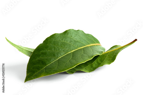 Fotomural Two bay leaves isolated on white.