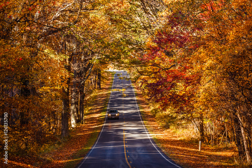 Fotografie, Obraz  Fall Season on Skyline Drive