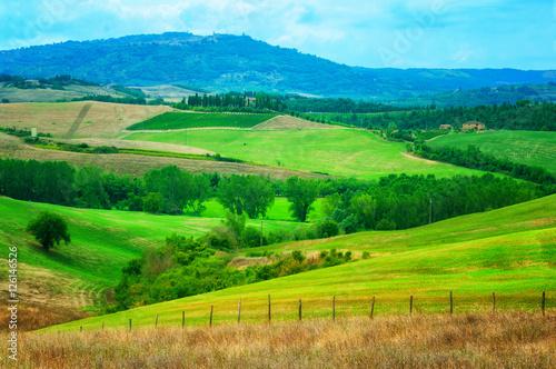 Foto op Canvas Groene Tuscany Italy
