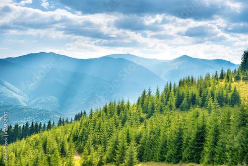 Foto op Aluminium Heuvel Green sunny hills