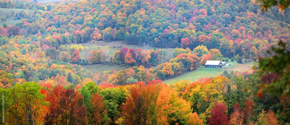Fototapety, obrazy: Scenic rural Vermont landscape in foliage season