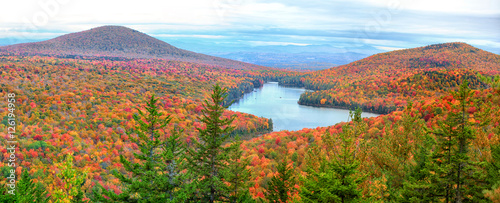 Panoramic view of Groton national forest in Vermont Canvas-taulu