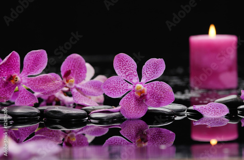 Poster Spa still life with pink orchid and candle on black stones