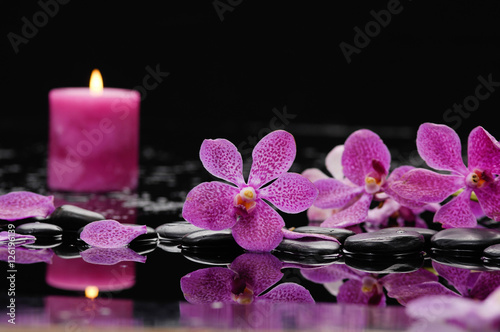Staande foto Spa still life with pink orchid and candle on black stones