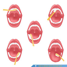 Infographic Of Brushing Teeth,  How To Brush Teeth The Right Way..