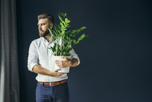 Young Bearded Businessman, Dressed In White Shirt And Dark Blue Trousers, Standing, Holding Flower Pot With Green Plant House And Looks Out Window. In Background Dark Blue Wall. Changing Jobs, Moving.