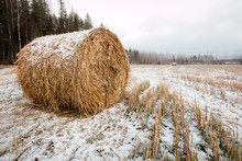 Round Hay Bale Covered By Snow Left On A Field In Late Autumn