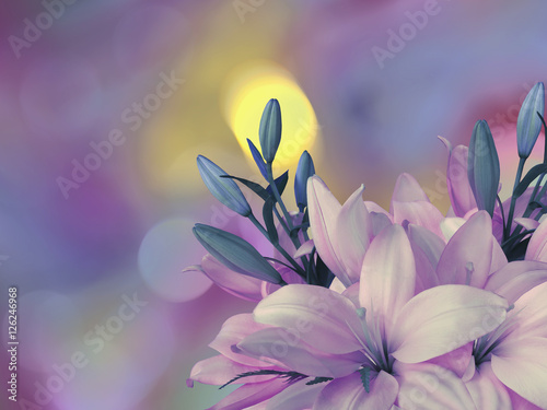 Tuinposter Bloemen pink-blue lilies flowers,on the bright blurred background with round yellow, blue,purple highlights. Closeup. Bright floral composition. card for the holiday. Nature..