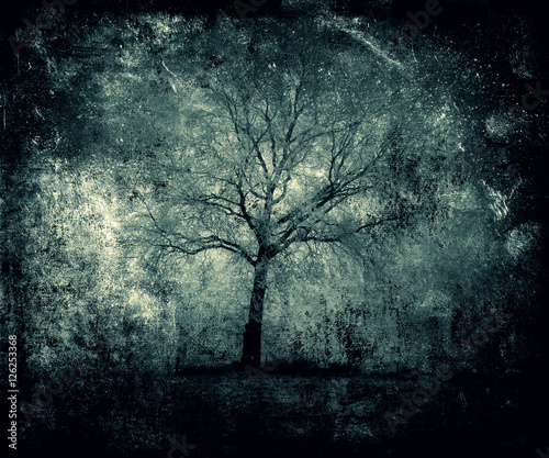 Abstract Tree Wallpaper Beautiful Magical Nature View