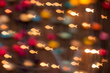 Defocus Bokeh Christmas Light Filtered Fish Abstract Background.