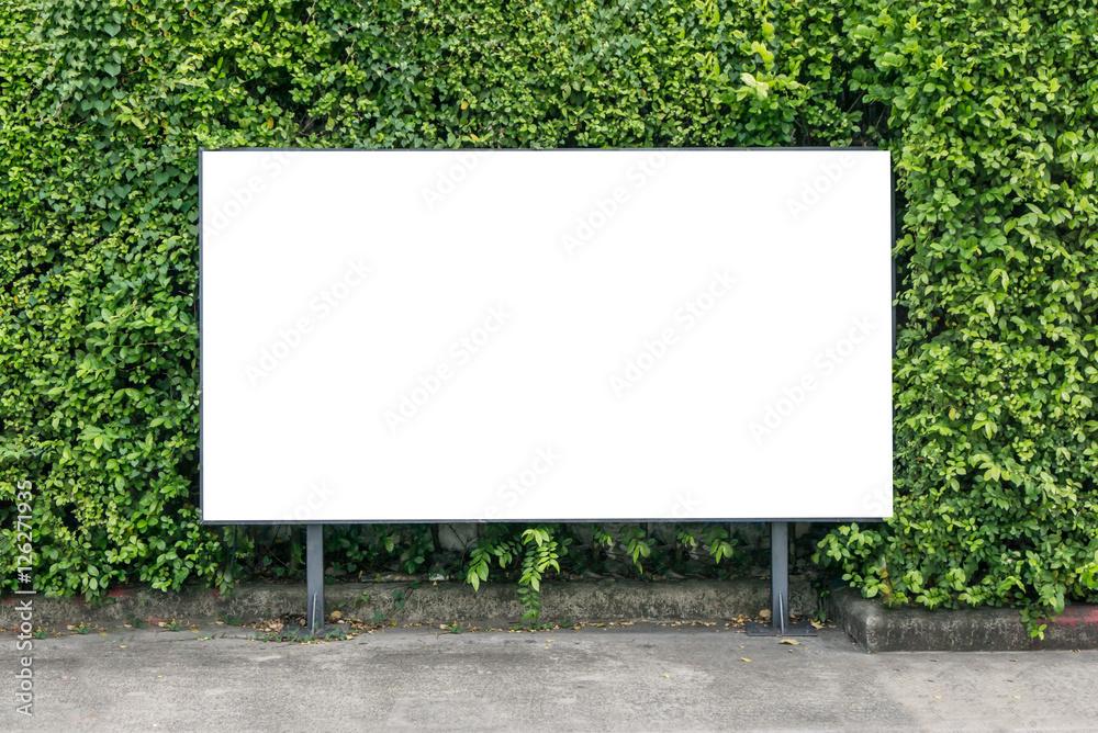 Fototapety, obrazy: White billboard on spring summer green leaves