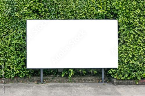 Fotografía  White billboard on spring summer green leaves