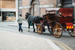 Traditional Irish Carriage