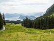 el tobogan más largo de Suiza, en la ruta del Pilatus con vistas al lago de los 4 cantones en Lucerna, Suiza, verano de 2016 OLYMPUS DIGITAL CAMERA