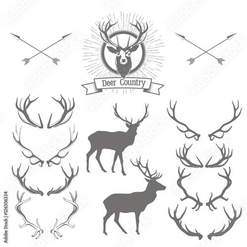 Leinwand Poster Set of deers  silhouette, deer head and antlers. Deer logo desig