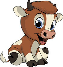 Funny Baby Cow