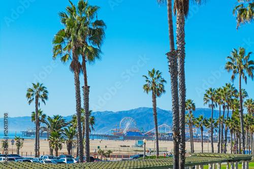 Keuken foto achterwand Los Angeles palm trees in Santa Monica