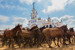 Herd of horses in front the church waiting for baptism.