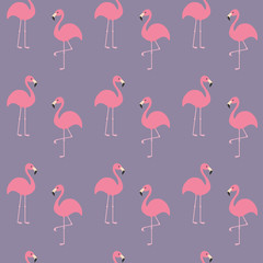 Flamingo set. Seamless Pattern Exotic tropical bird. Zoo animal collection. Cute cartoon character. Decoration element. Violet background. Flat design.