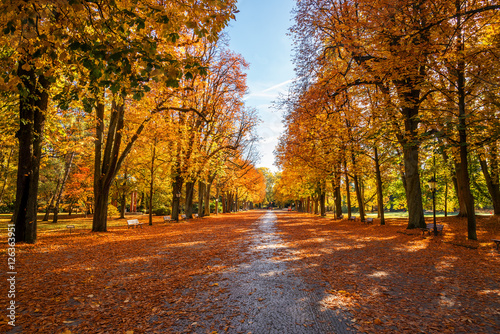 Canvas Prints Autumn Kurpark Bad Homburg