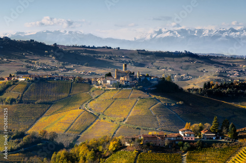 Photo Vineyards of Langhe (Piedmont, Italy): view of Castiglione Falletto, medieval vi