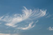 Cirrus White Clouds