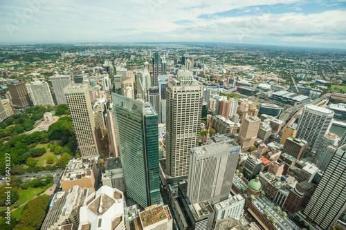 Fototapeta Sydney sky tower krajobraz obraz