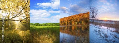 Fotografie, Obraz  4 seasons - spring, summer, fall, winter