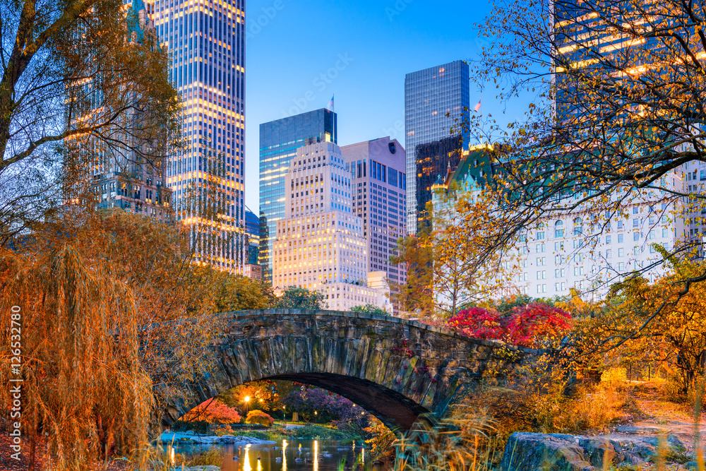 Fototapety, obrazy: Central Park Autumn