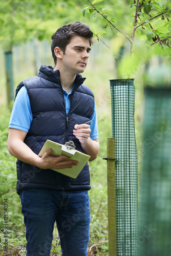 Forestry Worker With Clipboard Checking Young Trees Canvas-taulu
