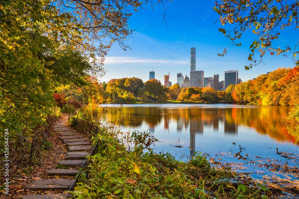 Fototapety, obrazy: Central Park New York City during Autumn.