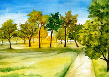Hand Drawn Watercolor Landscape. Early Autumn, Tree