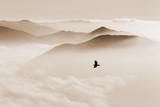 Sylwetki gór we mgle i ptak latający w sepii - 126546735