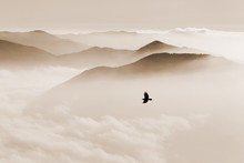 Silhouettes Of Mountains In The Mist And Bird Flying In Sepia To