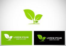 Plant Seed Leaf Logo