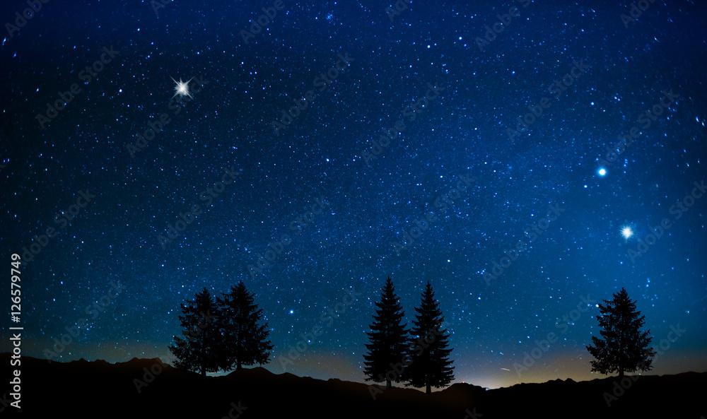 Fototapety, obrazy: arboles bajo el cielo estrellado