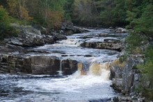 Rogie Falls, Black Water, Scotland