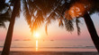 Wonderful sunset on the beach with coconut trees.