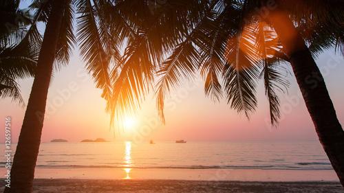 Foto op Aluminium Oranje Wonderful sunset on the beach with coconut trees.