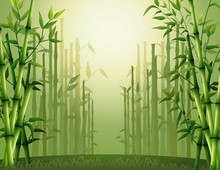 Green Bamboo Trees Background ...